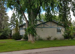 Photo 8: 4103 121 Street in Edmonton: Zone 16 House for sale : MLS®# E4163731