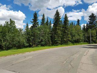 Photo 17: 4103 121 Street in Edmonton: Zone 16 House for sale : MLS®# E4163731