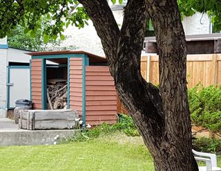 Photo 11: 4103 121 Street in Edmonton: Zone 16 House for sale : MLS®# E4163731