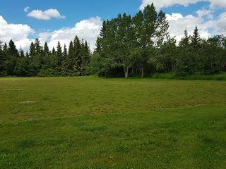 Photo 16: 4103 121 Street in Edmonton: Zone 16 House for sale : MLS®# E4163731