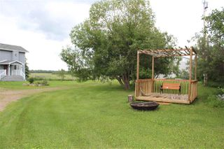 Photo 24: 57019 RGE RD 230: Rural Sturgeon County House for sale : MLS®# E4165001