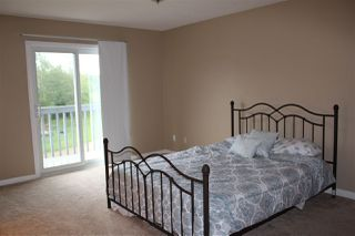 Photo 18: 57019 RGE RD 230: Rural Sturgeon County House for sale : MLS®# E4165001