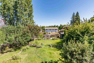 Photo 15: 5320 SUSSEX Avenue in Burnaby: Forest Glen BS House for sale (Burnaby South)  : MLS®# R2396250