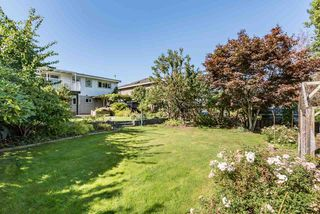 Photo 16: 5320 SUSSEX Avenue in Burnaby: Forest Glen BS House for sale (Burnaby South)  : MLS®# R2396250