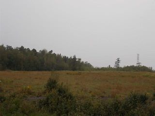 Photo 3: 859 Abercrombie Road in Abercrombie: 108-Rural Pictou County Vacant Land for sale (Northern Region)  : MLS®# 201922904