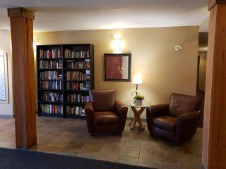 Photo 5: 320 278 Suder Greens Drive in Edmonton: Zone 58 Condo for sale : MLS®# E4186224