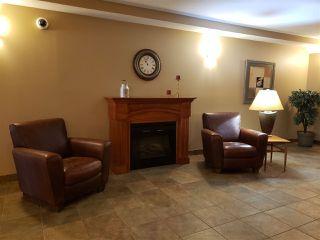 Photo 6: 320 278 Suder Greens Drive in Edmonton: Zone 58 Condo for sale : MLS®# E4186224