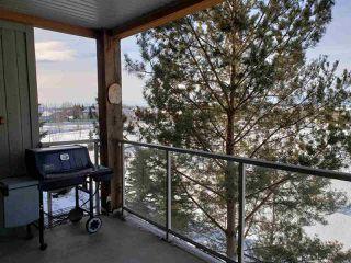 Photo 21: 320 278 Suder Greens Drive in Edmonton: Zone 58 Condo for sale : MLS®# E4186224