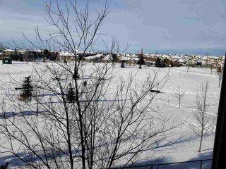Photo 18: 320 278 Suder Greens Drive in Edmonton: Zone 58 Condo for sale : MLS®# E4186224