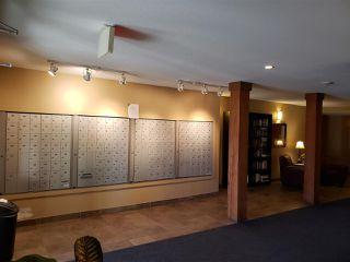 Photo 4: 320 278 Suder Greens Drive in Edmonton: Zone 58 Condo for sale : MLS®# E4186224