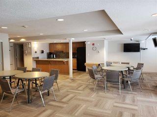 Photo 24: 320 278 Suder Greens Drive in Edmonton: Zone 58 Condo for sale : MLS®# E4186224