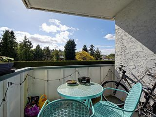 Photo 15: 202 3880 Shelbourne St in Saanich: SE Cedar Hill Condo for sale (Saanich East)  : MLS®# 840122