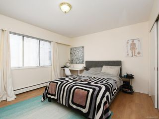 Photo 11: 202 3880 Shelbourne St in Saanich: SE Cedar Hill Condo for sale (Saanich East)  : MLS®# 840122