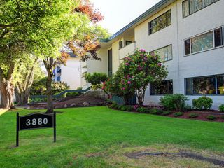 Photo 18: 202 3880 Shelbourne St in Saanich: SE Cedar Hill Condo for sale (Saanich East)  : MLS®# 840122