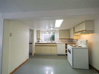 Photo 22: 238 Beechwood Ave in : Vi Fairfield East House for sale (Victoria)  : MLS®# 854081