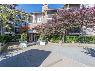 Main Photo: 404 8915 202 Street in Langley: Walnut Grove Condo for sale : MLS®# R2501980