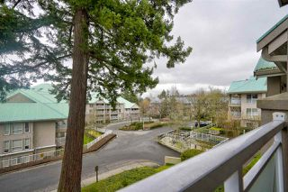 """Photo 19: 15130 29A Avenue in Surrey: King George Corridor Condo for sale in """"THE SANDS"""" (South Surrey White Rock)  : MLS®# R2509572"""