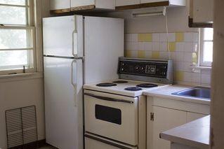 Photo 10: 8120 76 Avenue in Edmonton: Zone 17 House for sale : MLS®# E4224457