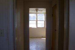 Photo 21: 8120 76 Avenue in Edmonton: Zone 17 House for sale : MLS®# E4224457