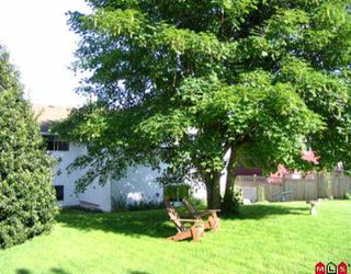 Photo 8: 1349 KENT ST: White Rock House for sale (South Surrey White Rock)  : MLS®# F2511105