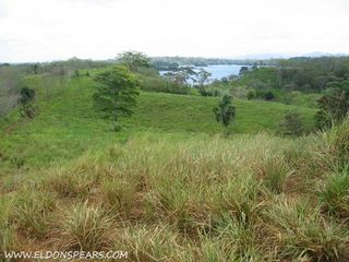 Photo 5:  in Lake Bayano: Commercial for sale (Lago Bayano)  : MLS®# Lakefront