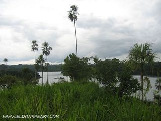 Photo 12:  in Lake Bayano: Commercial for sale (Lago Bayano)  : MLS®# Lakefront