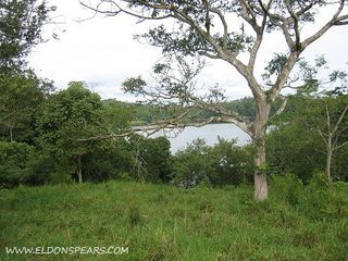 Photo 9:  in Lake Bayano: Commercial for sale (Lago Bayano)  : MLS®# Lakefront