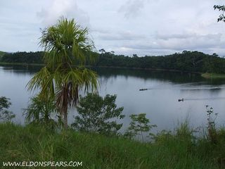Photo 2:  in Lake Bayano: Commercial for sale (Lago Bayano)  : MLS®# Lakefront