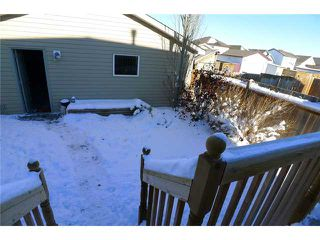 Photo 15: 173 TARALEA Green NE in CALGARY: Taradale Residential Detached Single Family for sale (Calgary)  : MLS®# C3595511