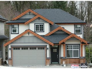 "Photo 1: 24756 100A Avenue in Maple Ridge: Albion House for sale in ""JACKSON RIDGE, MAPLE RIDGE"" : MLS®# V1046180"