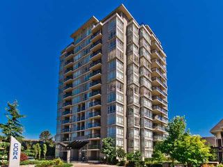 "Photo 1: 508 575 DELESTRE Avenue in Coquitlam: Coquitlam West Condo for sale in ""CORA TOWERS"" : MLS®# V1138980"