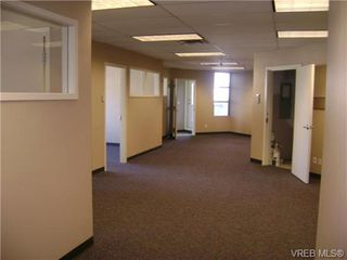 Photo 7: 304/305 830 Shamrock St in VICTORIA: SE Quadra Office for sale (Saanich East)  : MLS®# 717364