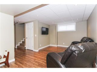 Photo 38: 230 CRANBERRY Close SE in Calgary: Cranston House for sale : MLS®# C4063122