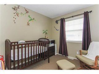 Photo 33: 230 CRANBERRY Close SE in Calgary: Cranston House for sale : MLS®# C4063122