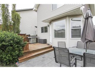 Photo 8: 230 CRANBERRY Close SE in Calgary: Cranston House for sale : MLS®# C4063122