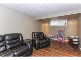Photo 40: 230 CRANBERRY Close SE in Calgary: Cranston House for sale : MLS®# C4063122