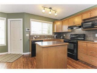 Photo 17: 230 CRANBERRY Close SE in Calgary: Cranston House for sale : MLS®# C4063122