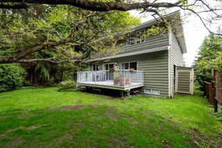 """Photo 19: 1491 PERCY Court in North Vancouver: Indian River House for sale in """"INDIAN RIVER"""" : MLS®# R2165581"""