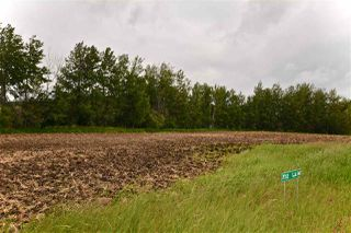 Main Photo: 7312 514 TWP RD Road: Rural Parkland County Rural Land/Vacant Lot for sale : MLS®# E4071135