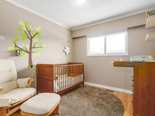 Photo 10: 1465 LAURIER AVENUE in Port Coquitlam: Lincoln Park PQ House for sale : MLS®# R2205044