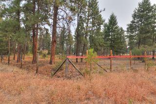 Photo 4: 4090 Field Road in Kelowna: South East Kelowna House for sale (Central Okanagan)  : MLS®# 10140100