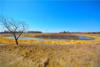 Photo 7: 69081 PR 212 RD 30E Road in Cooks Creek: RM of Springfield Residential for sale (R04)  : MLS®# 1809409
