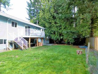 Photo 17: 4036 196TH Street in Langley: Brookswood Langley House for sale : MLS®# R2303589