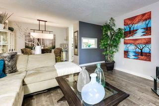 Main Photo: 214 17109 67 Avenue in Edmonton: Zone 20 Condo for sale : MLS®# E4129797