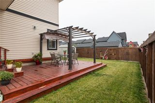 Photo 37: 353 WALDEN Square SE in Calgary: Walden Detached for sale : MLS®# C4208280