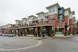 """Photo 15: 312 2940 KING GEORGE Boulevard in Surrey: King George Corridor Condo for sale in """"High Street"""" (South Surrey White Rock)  : MLS®# R2332720"""