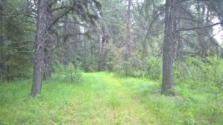 Photo 10: 5 51410 RGE RD 271: Rural Parkland County Rural Land/Vacant Lot for sale : MLS®# E4143959