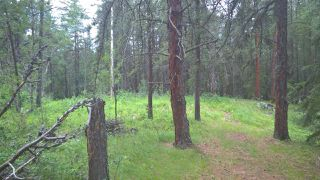 Photo 9: 5 51410 RGE RD 271: Rural Parkland County Rural Land/Vacant Lot for sale : MLS®# E4143959