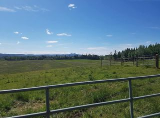 Photo 3: 23200 S MCBRIDE TIMBER Road in Prince George: Upper Mud House for sale (PG Rural West (Zone 77))  : MLS®# R2354955