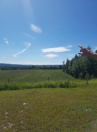 Photo 7: 23200 S MCBRIDE TIMBER Road in Prince George: Upper Mud House for sale (PG Rural West (Zone 77))  : MLS®# R2354955